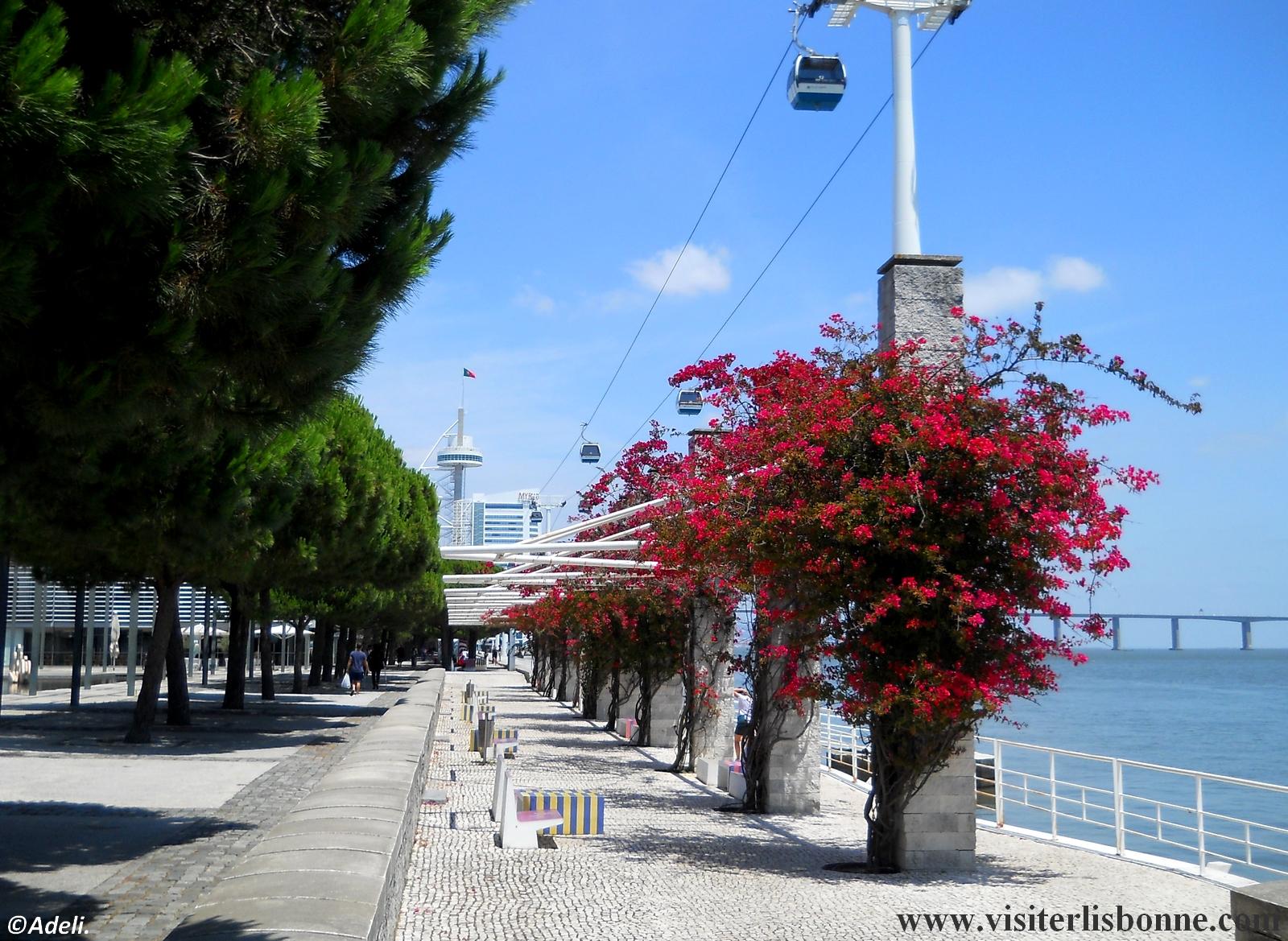 Tour Vasco de Gama - Torre Vasco da Gama - Parc des Nations - Lisbonne